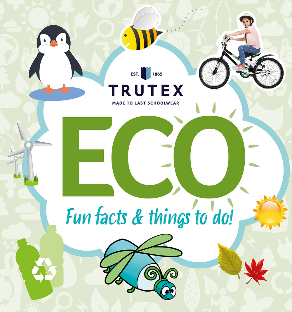 Eco Activity Pack